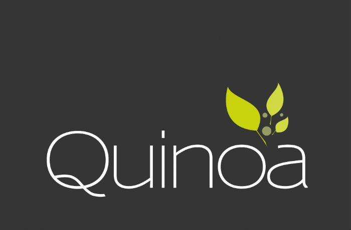 Quinoa-LogoC6-2000x2000px